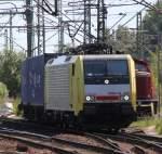 Hamburg-Spezial/143210/es-64-f4--205-bei-der ES 64 F4 -205 bei der Ausfahrt im Bahnhof Hamburg-Harburg(04.06.2011)